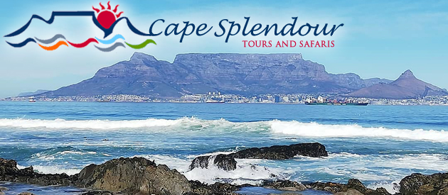CAPE SPLENDOUR TOURS & SAFARIS