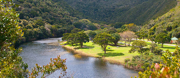 Garden Route National Park Wilderness Businesses In